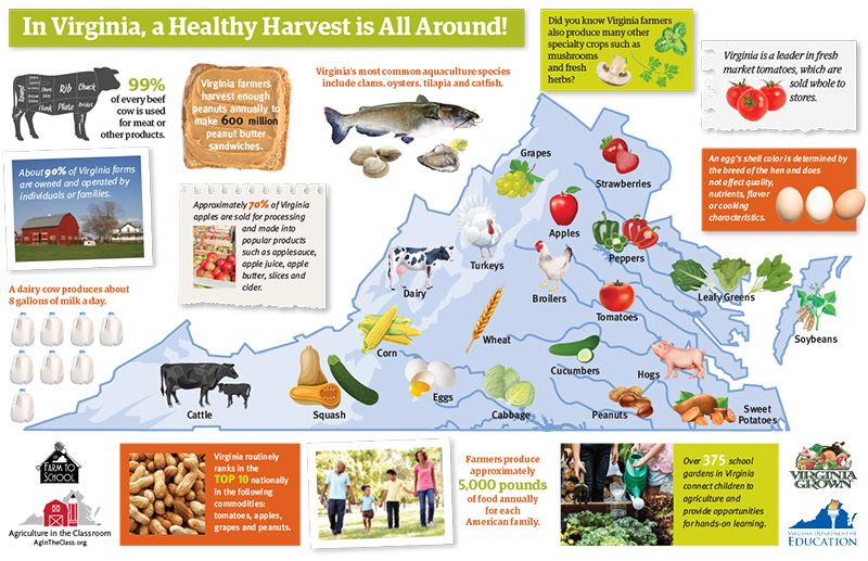 Healthy Harvest Map