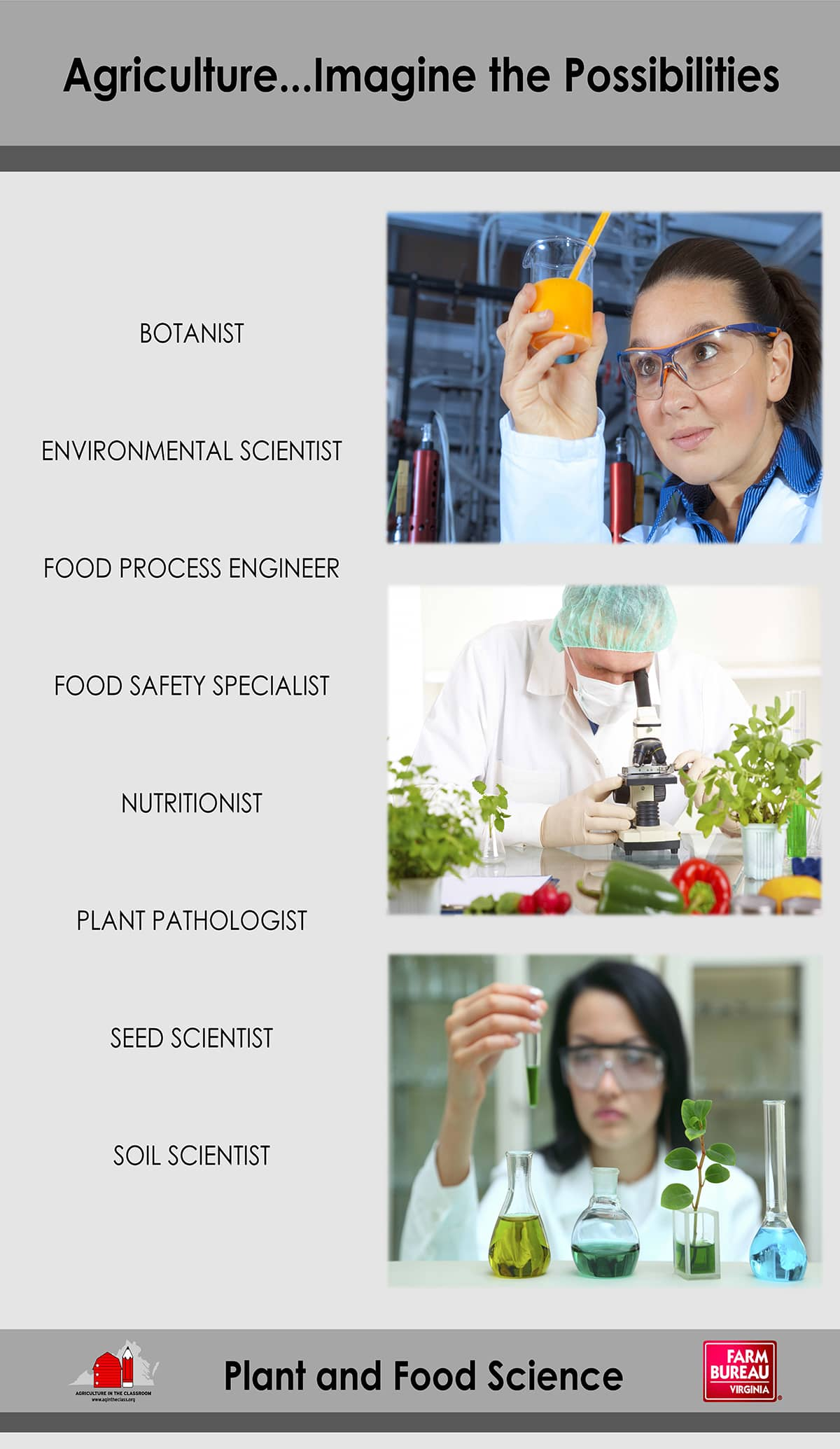 Plant and Food Science