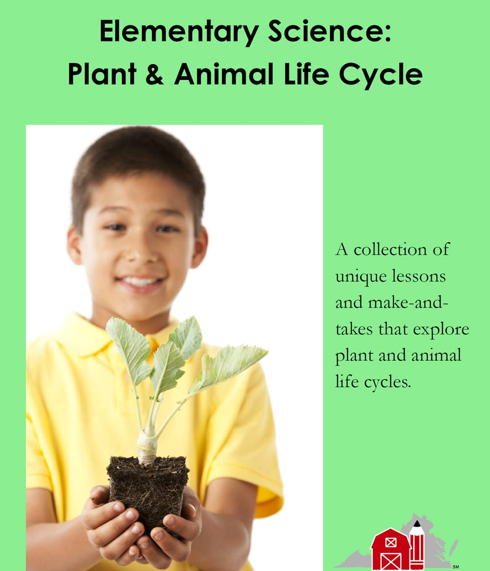 Elementary Science: Plant & Animal Life Cycle