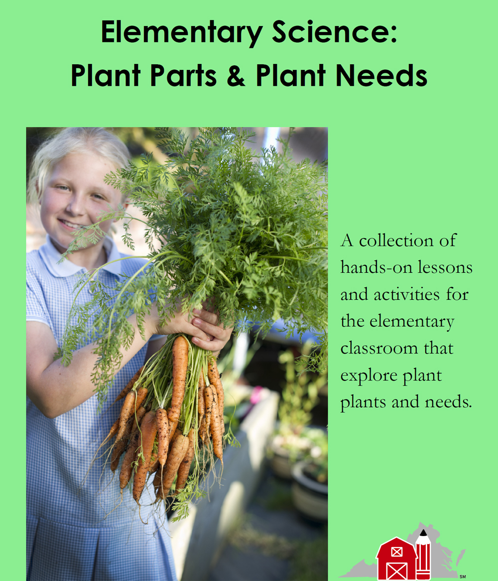 Elementary Science: Plant Parts & Plant Needs
