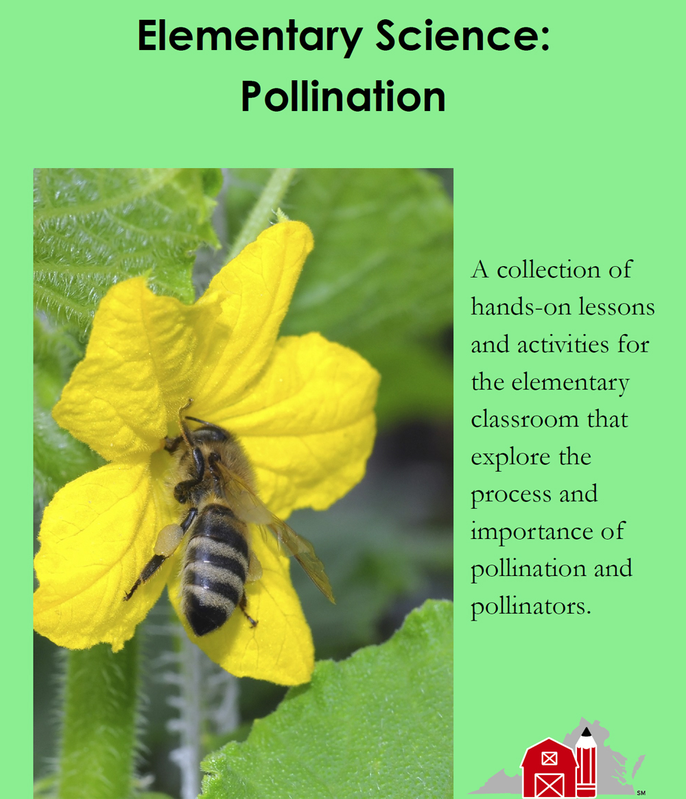 Elementary Science: Pollination